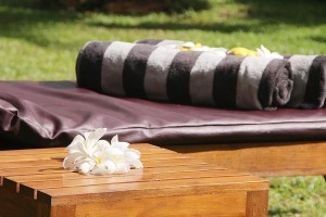 Ayurveda Kingdom Resort Sri Lanka - Servizi Offerti