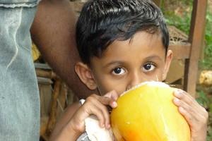 Kingdom Ayurveda Resort - Popolazione, Sri Lanka